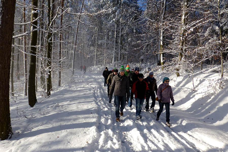 winterwanderung_2014-12-28_02