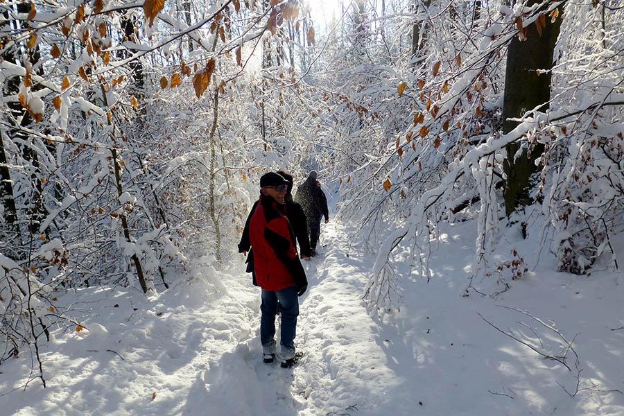 winterwanderung_2014-12-28_03